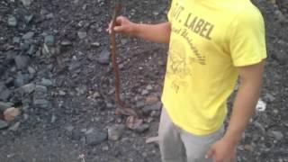 preview picture of video 'Szarlota i jej węże'