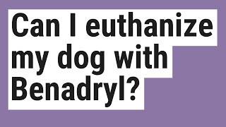 Can I euthanize my dog with Benadryl?