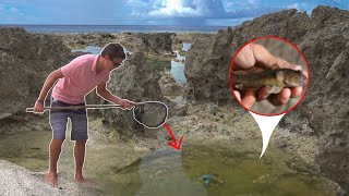 SAVING GOBY FISH with *HOMEMADE* FISH NET!!!