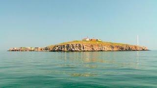 Вокруг острова Змеиный