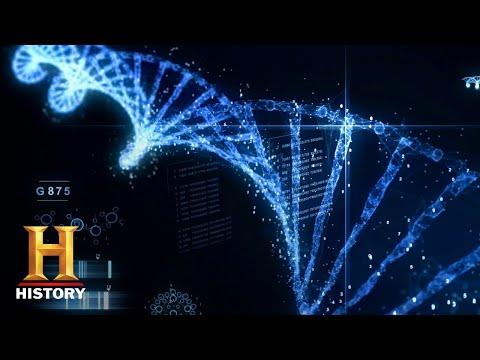Geheime DNA-code versleuteld in oude artefacten