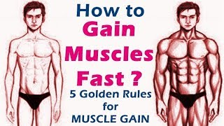 How to gain muscle fast | bodybuilding muscle gain diet & workout tips | Hindi | Fitness Rockers