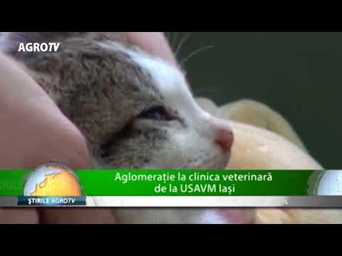 Tratamentul chirurgical al miopiei