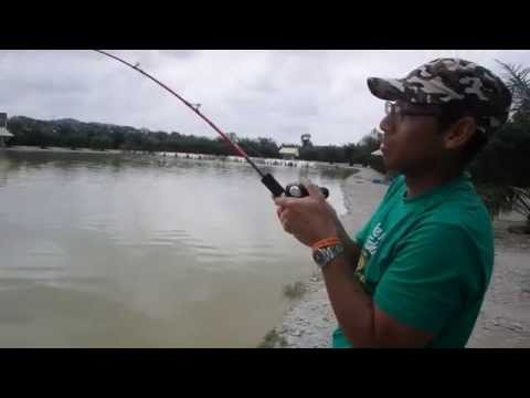 Umpan Mekong Catfish~Rawang Natural Exotic Fishing Pond  Part 1