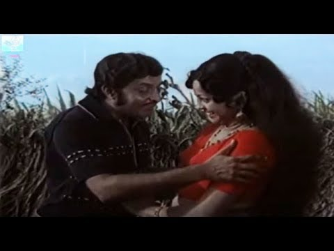 Chala Kambolathil - Original Video Song from the Superhit Movie Jayikkanay Janichavan, HD