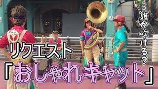 リクエスト「おしゃれキャット」【タイムトラベラーバンド】