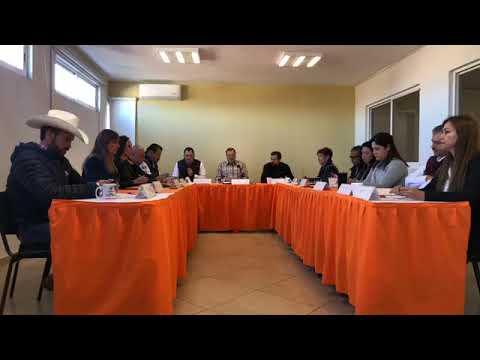 Sesión Ordinaria No. 35 de Ayuntamiento 25 de noviembre de 2019