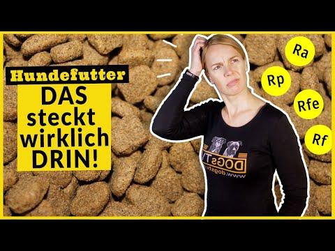 Hundefutter Hund Ernährung / Analytische Bestandteile – Was steckt dahinter / Rohprotein und Co.