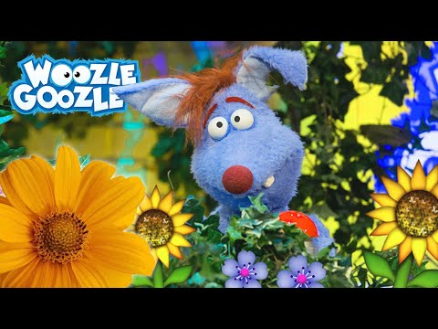 , title : 'Wann blühen Blumen? | GANZE FOLGE