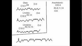 Biochem #2: Naming Fatty Acids