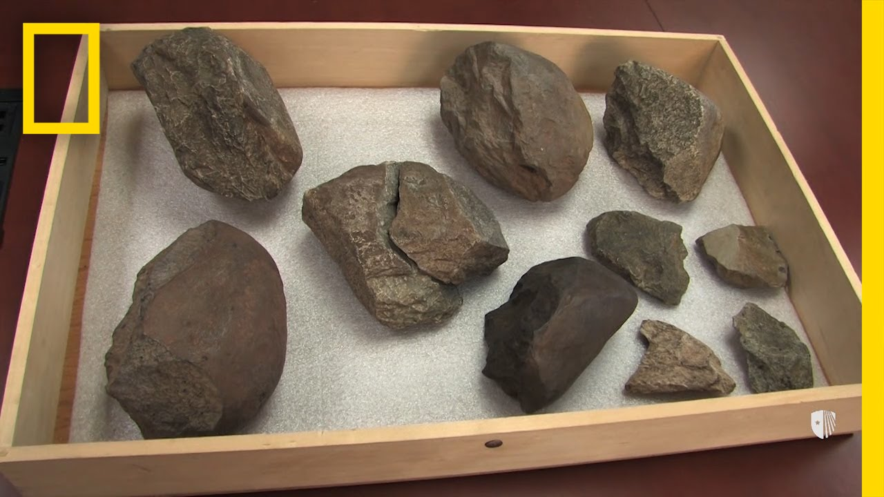 Oldest Known Stone Tools Discovered: 3.3 Million Years Old | National Geographic thumbnail