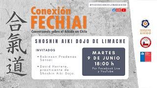 Conexión Fechiai, conversando sobre el Aikido en Chile / Shoshin Aiki Dojo
