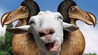 Goat MMO Simulator (1) | DODO ABOMINATION!