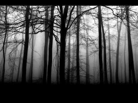 Ocitol som sa v hlbokom lese...