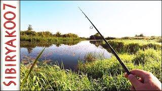 Ловля щуки в траве на мелководье спиннингом