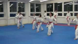 preview picture of video '13.6.2012 - Karate - Skúšky na STV (páskovanie) Karate Žilina'