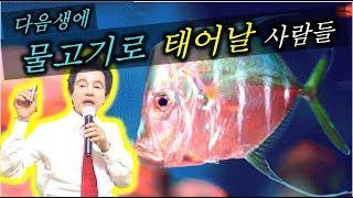 이런 사람은 다음생에 환생하면 물고기로 태어난다. - 허경영 -