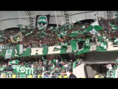 """frente radical vamos cali yo te quiero"" Barra: Frente Radical Verdiblanco • Club: Deportivo Cali"