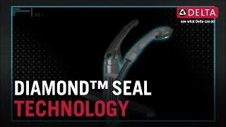 Watch Diamond Seal Technology