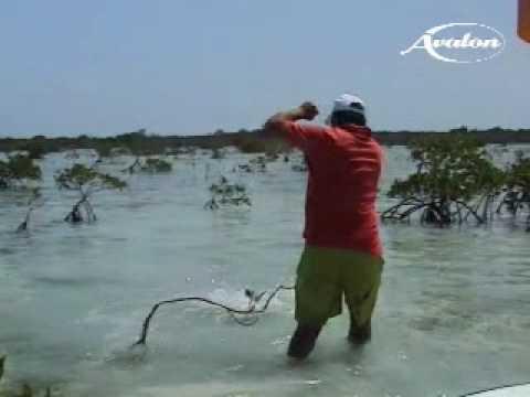 Il veydersa per pescare in primavera dellautunno