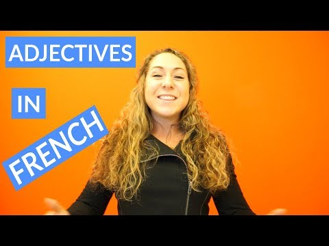 Clip of teaching French adjective agreement, pronunciation, and placement for Take Lessons. Featured in Take Lessons promotional video.