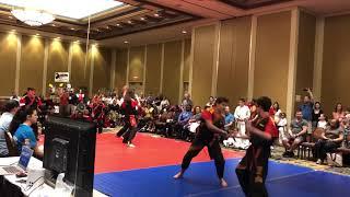 2019 NAFMA Demo Team Grand Champions