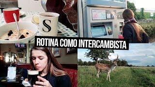 ROTINA DE INTERCAMBISTA EM DUBLIN | Mi Alves