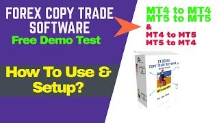 mt4 copy trading - Free video search site - Findclip Net