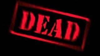 Pauly Shore Is Dead (2003) Video