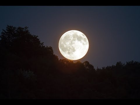 FULL MOON VIDEO HD | Free Stock Footage | Free HD Video - no copyright
