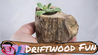 Quick Driftwood Projects