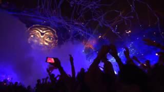 Hardwell -Tiësto Adagio For Strings Vs Moti Lion Live At Tomorrowland 2014 FULL HD 2