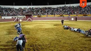 Интересный конкурс с быком!