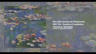 Wie schön leuchtet der Morgenstern, BWV 764