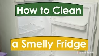 How to Clean a Smelly Fridge  | Consumer Reports