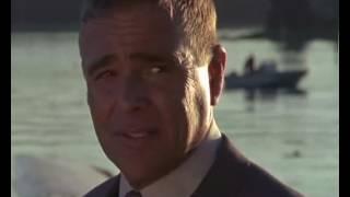 """""""Przystań miłości""""-Roberta Cannon – bogatego i wszechwładnego Prezesa Bostońskiej firmy  komputerowej dosięga nieszczęście – jego brat Kevin ginie….Film fab."""