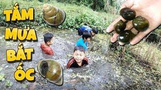 Tony   Thử Thách Bắt Ốc Dưới Mưa - Catching Snail In Rain