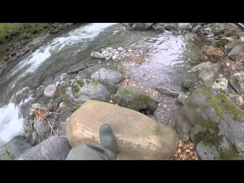 Scaricare una caccia di gioco e una pesca attraverso un torrente sul computer