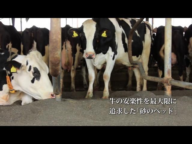 藤井牧場 リクルートムービー