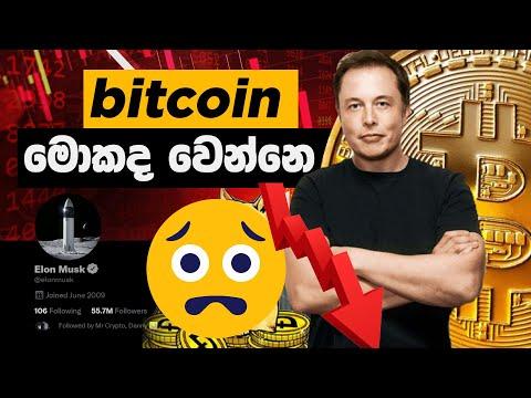 5dimes timp de depozit bitcoin