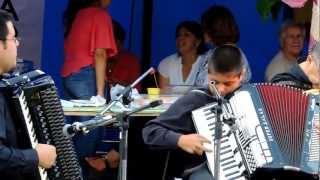 preview picture of video 'Curso de Acordeón 2012 Municipalidad de San Bernardo, CHILE'