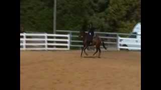 preview picture of video 'Gabriella - Side Saddle Jumping Demo -Kfar Netter Havat Harlev 12-6-09'