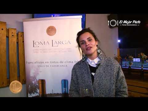 Viña Loma Larga