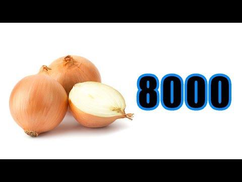 8000 | CIBUĽA CHALLENGE