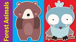 Learn Forest Animals for Kids | Video Flashcards | Kindergarten, Preschool, ESL | Fun Kids English