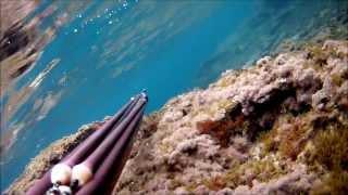 preview picture of video 'Video di pesca in apnea spearfishing del 31 12 2013 a Crotone con GIMANSUB dentex 100'