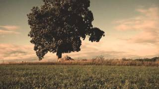 Jose Gonzalez - Stay in the Shade (unofficial music video)