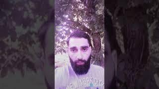 Тимати кадыров хабиб 2018