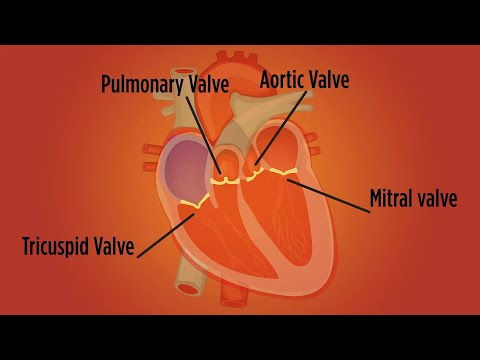 Video Heart Valve Disease in Women