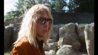 Spinal Tap in Zoo - ape discussion